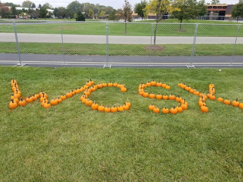 <big><big>Do you think we brought enough pumpkins?